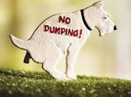 a98068_lawn-ornament_8-no-dump